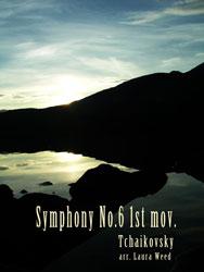 Symphony No. 6 (1st mov.)